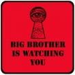 il-grande-fratello-ti-sta-guardando